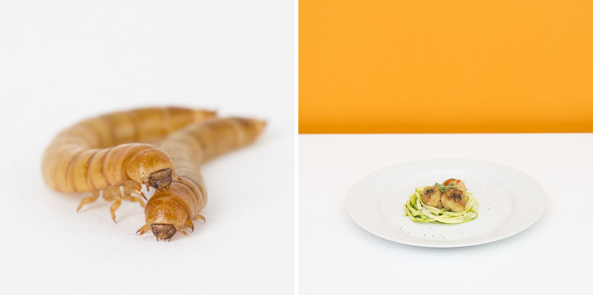 Potato dumplings with mealworms on spaghetti-like courgettes