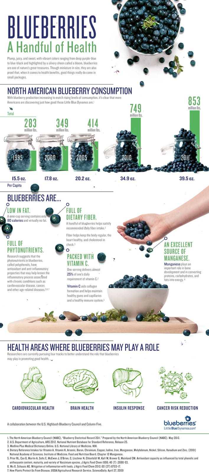 blueberry infographic a handful of health