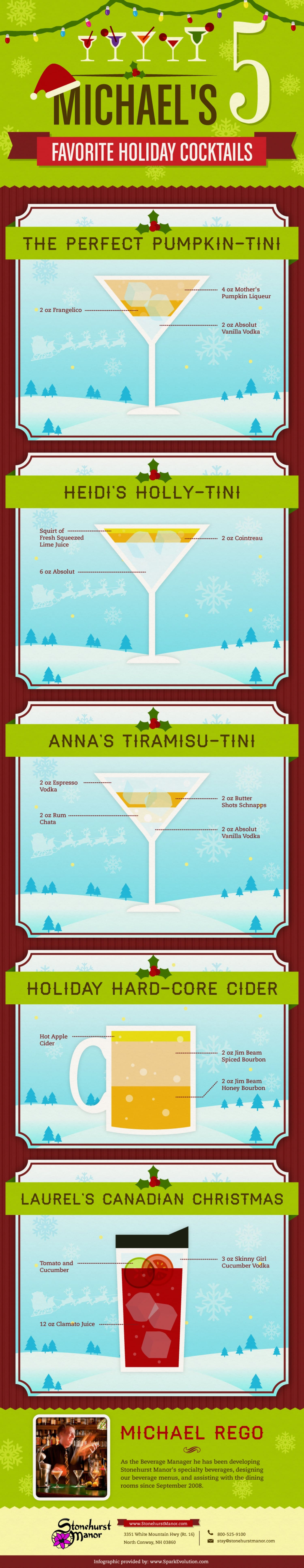 diy mixology michaels top 5 holiday cocktails