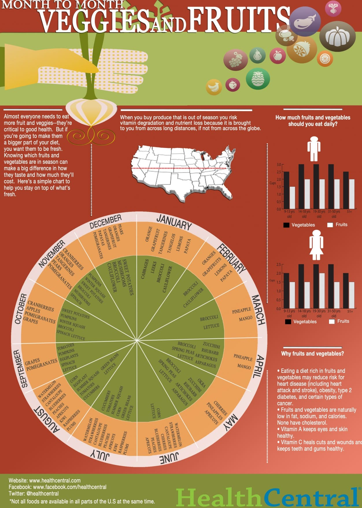 month to month veggies and fruit infographic your guide to seasonal cooking
