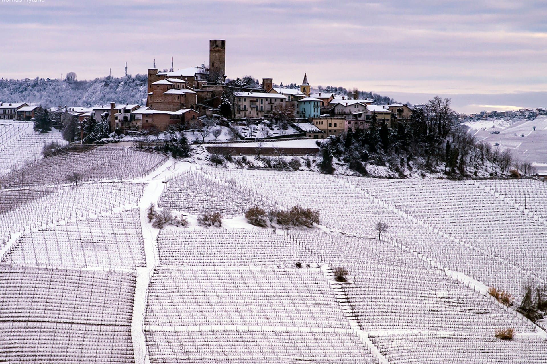 Errazuriz Wine Photographer of the Year (Places) A Langhe Winter by Thomas Hyland