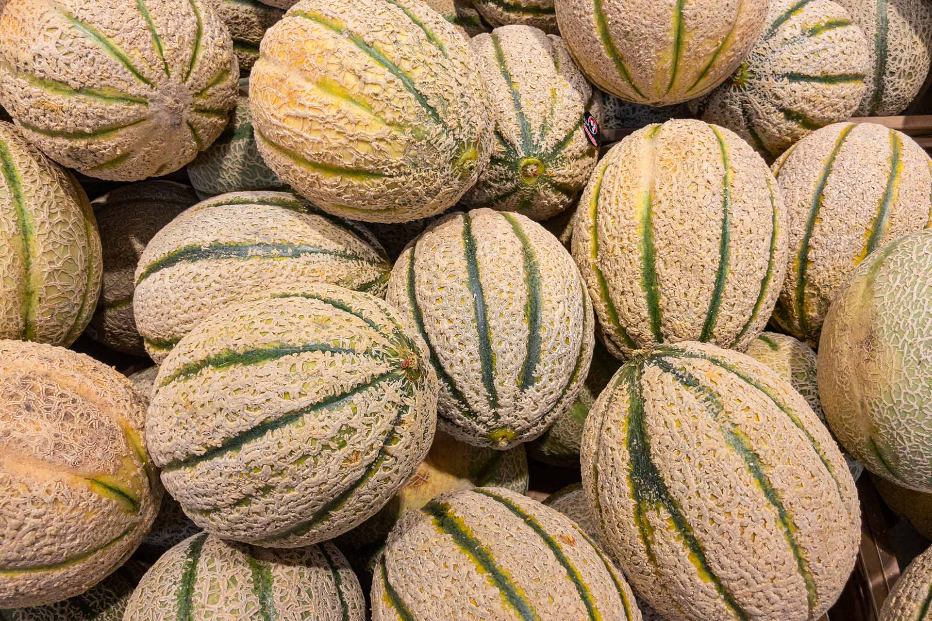Cantalupes Melon