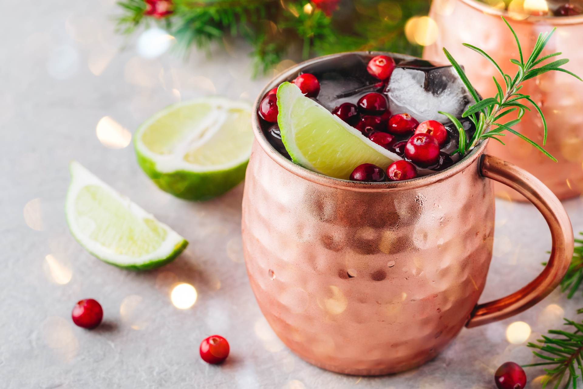 christmas moscow mule with cranberries ©iStock