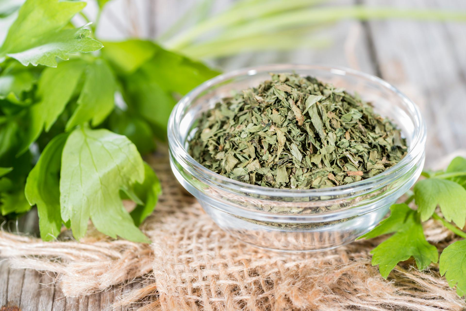 lovage-how-to-store