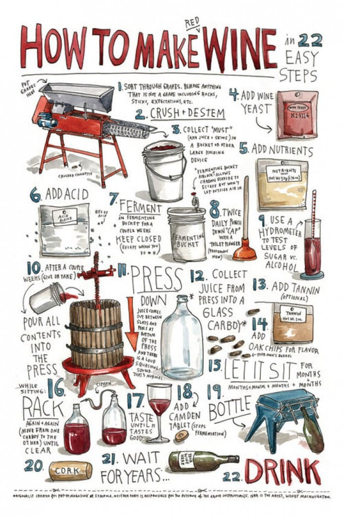 How to Make Wine in 22 easy steps