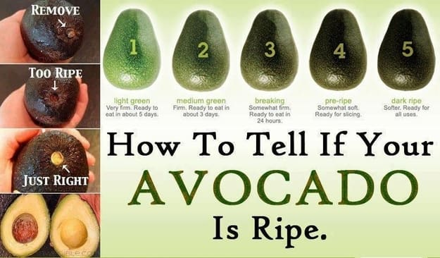 how-to-tell-if-your-avocado-is-ripe_534834884103d.jpg