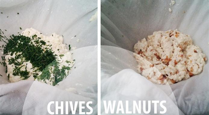 l_5969_cheese-kits.jpg