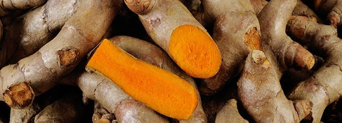 Turmeric Roots