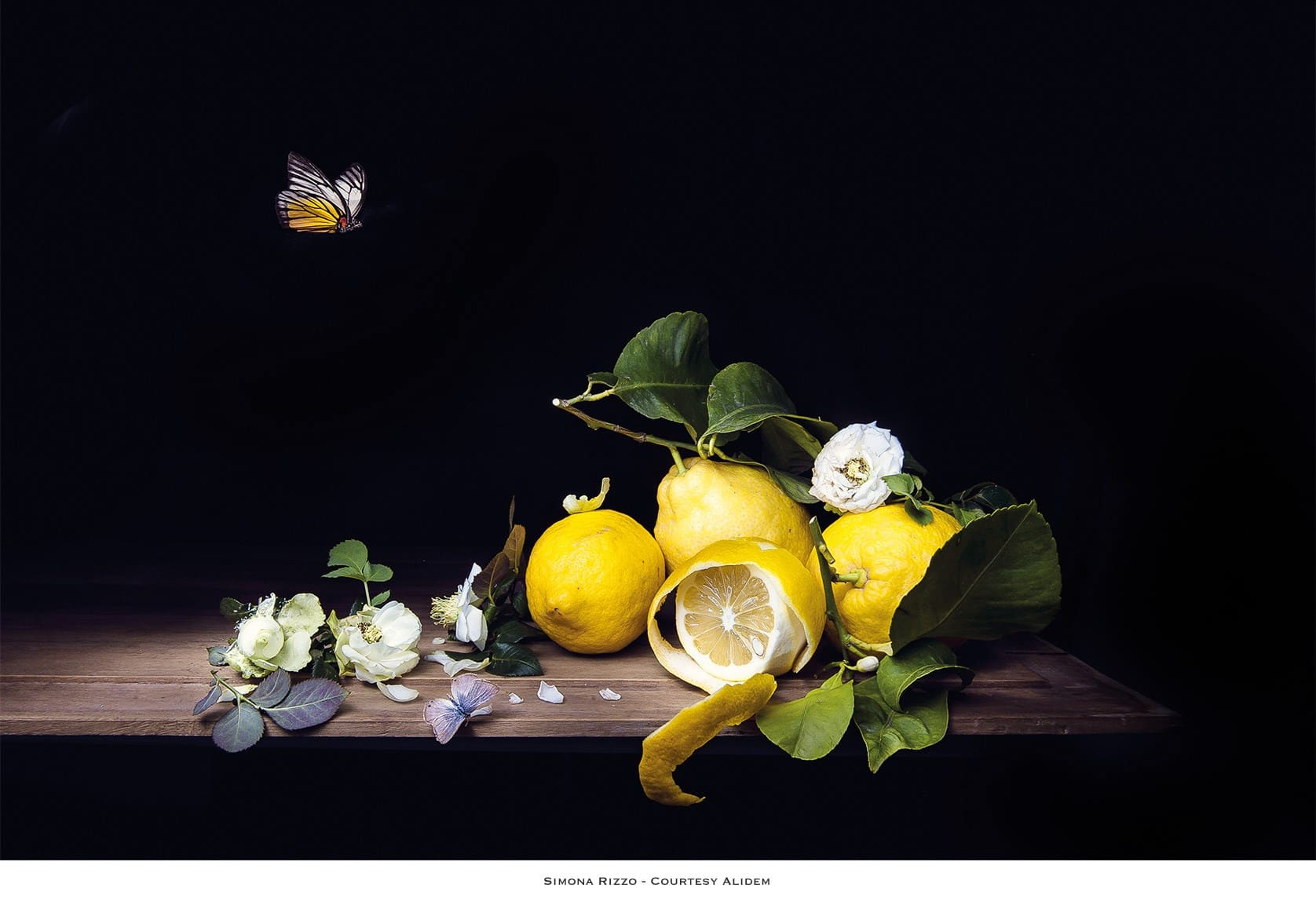 Nature Morte by Simona Rizzo