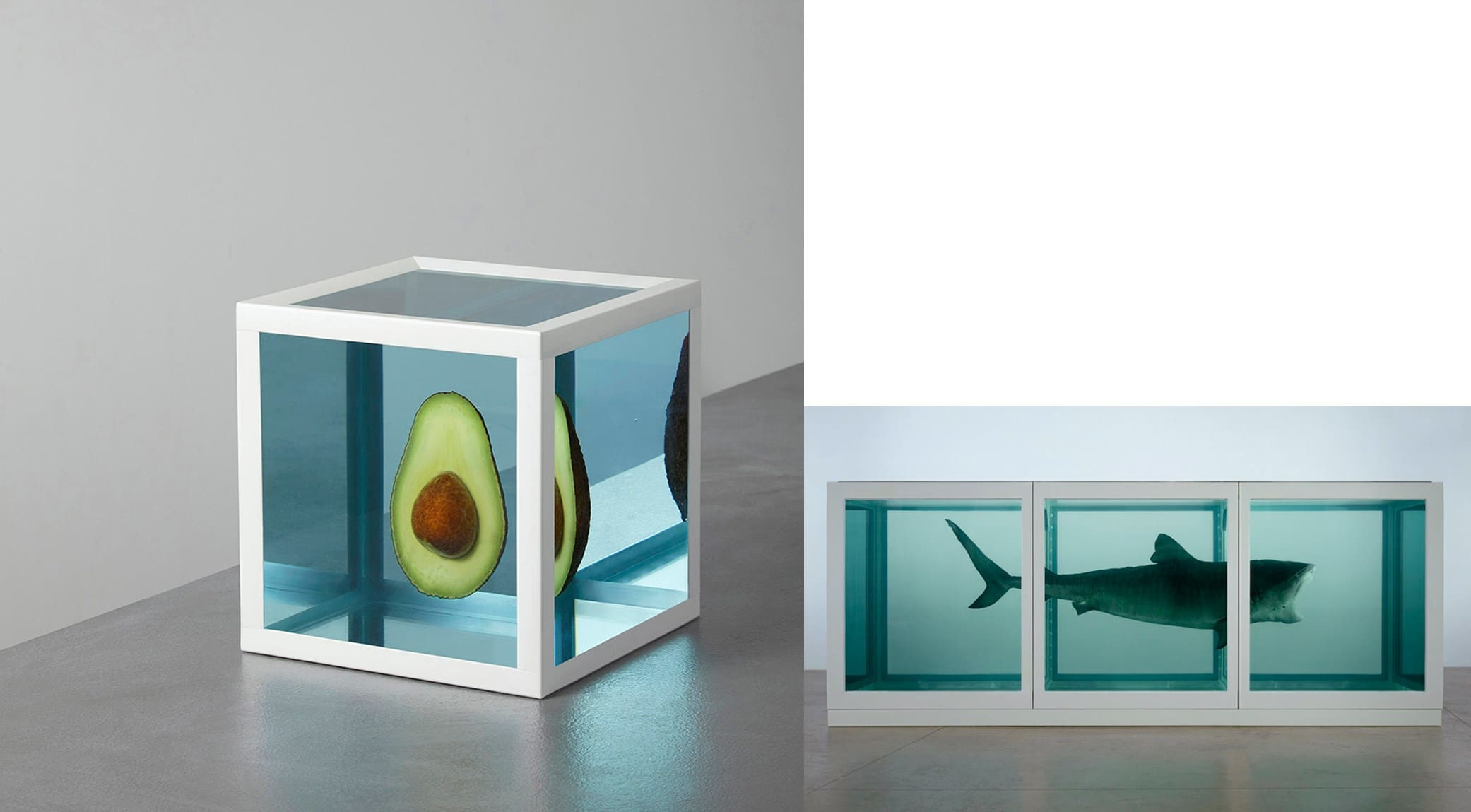 Kyle Bean and Damien Hirst