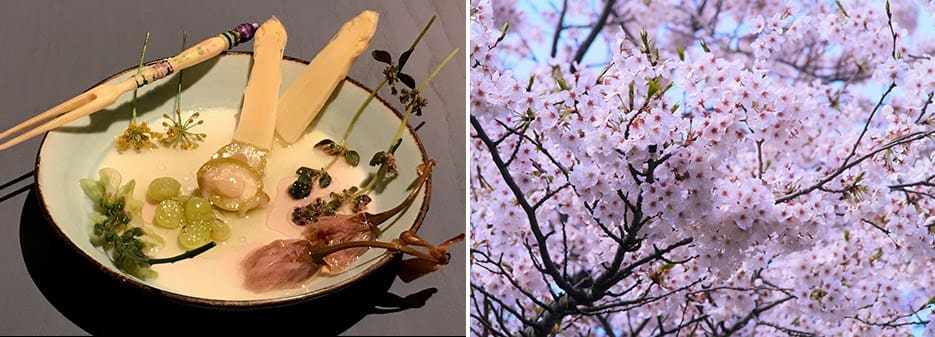Thomas Frebel's dish with Japanese Local flowers