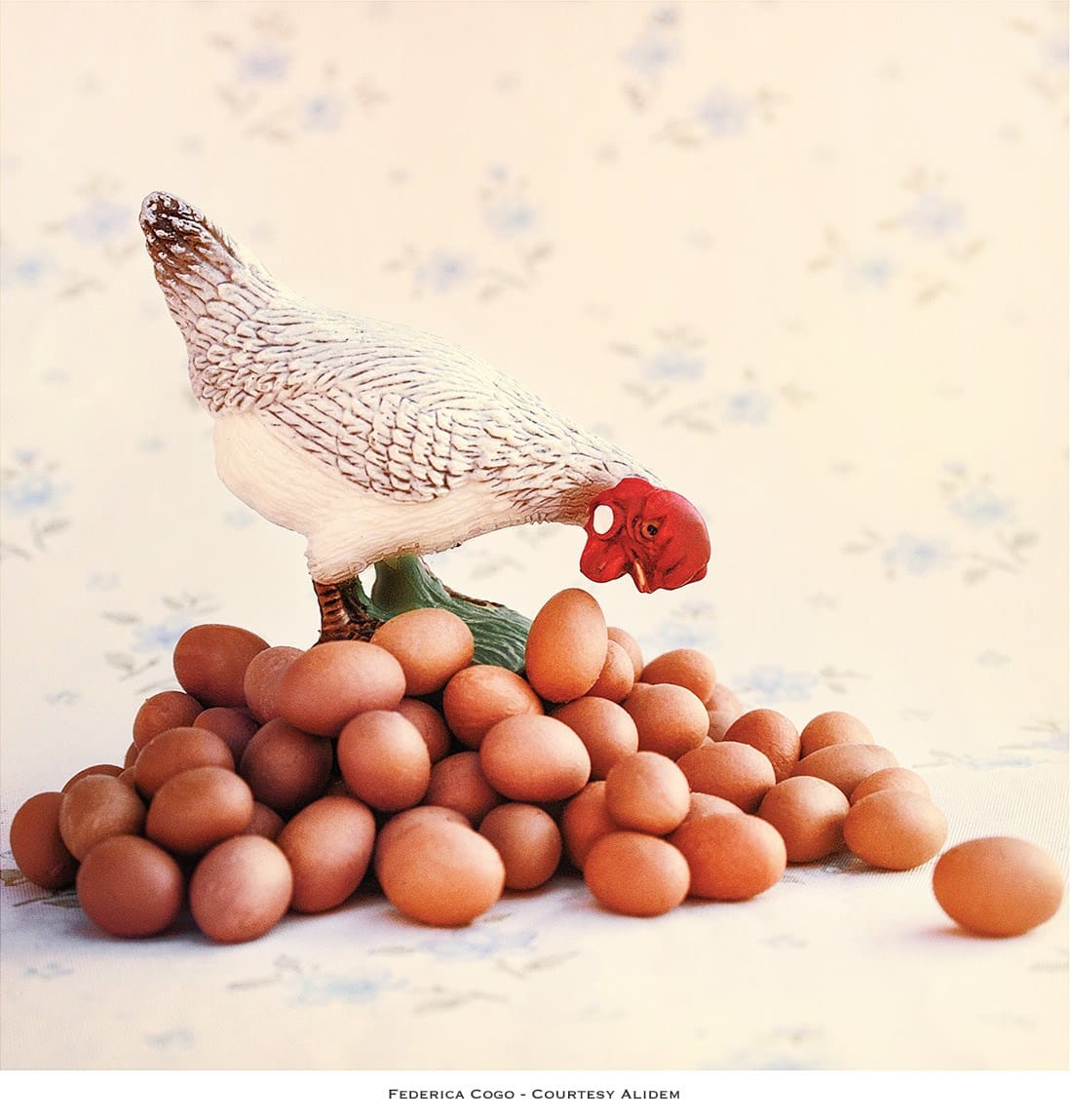 Federica Cogo, Nature morte