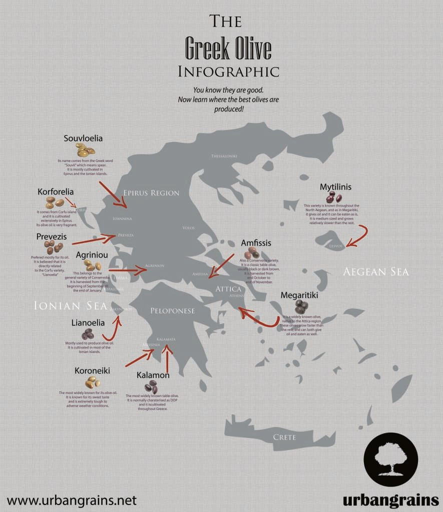 Greek Olive Map