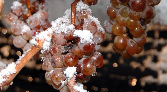 Ice-Wine-Rivard-Flickr