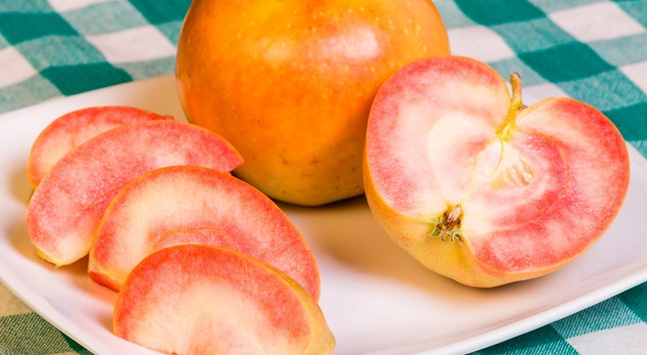 millennial pink_Pink Pearl Apples