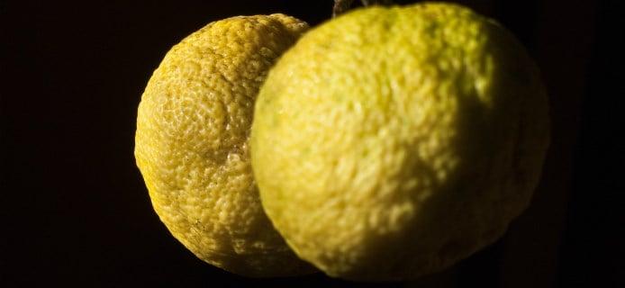 Weird Citrus Fruits 8