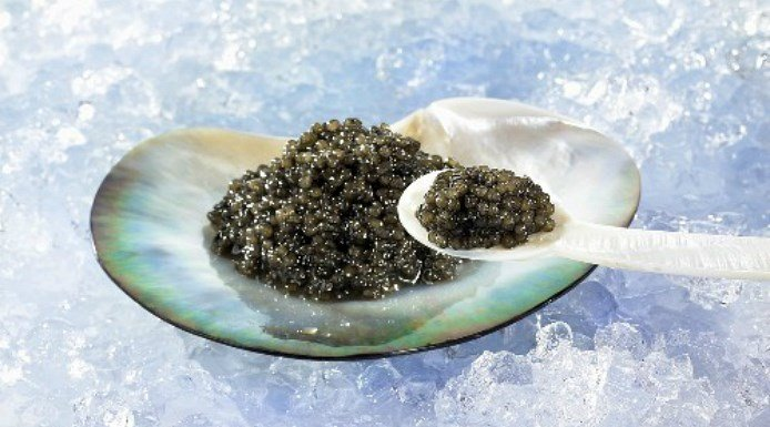 caviar in shell