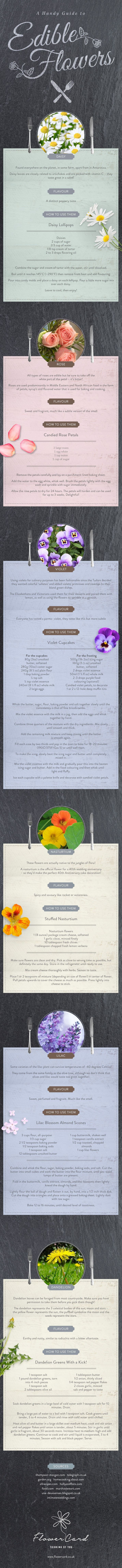 how-to-use-edible-flowers