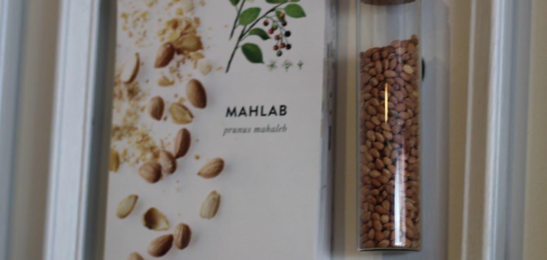mah-lab-spice
