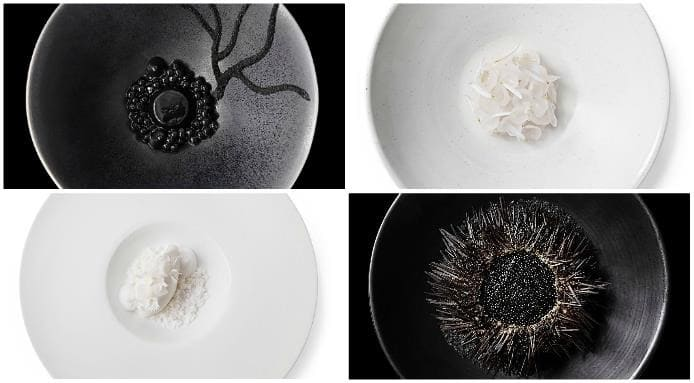 Black and White Food Plating