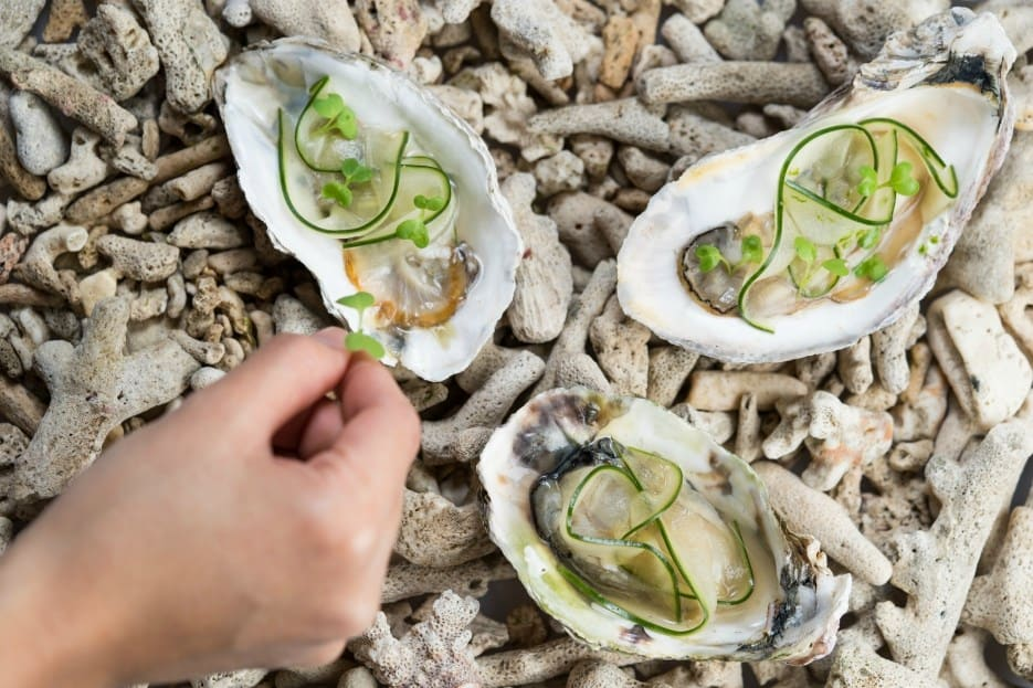 oysters-pickled-cucumbers-lime-sugarcane-wine