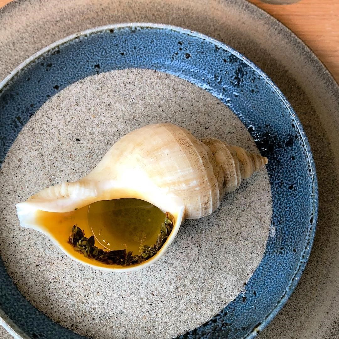 sea-snail-broth