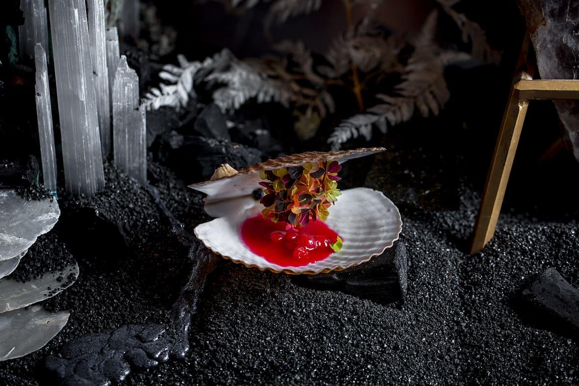 Scallops and bilberry