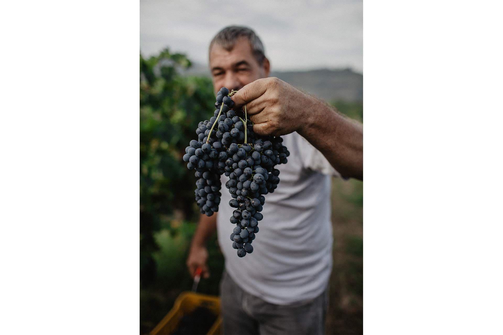 Man holding a grape