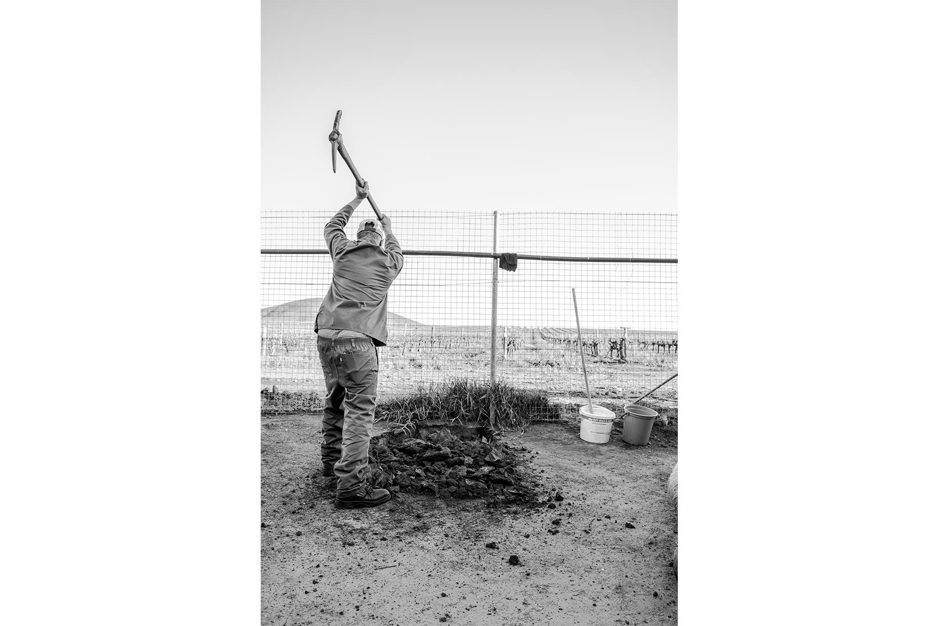 A worker preparing the soil for the first vegetable garden.
