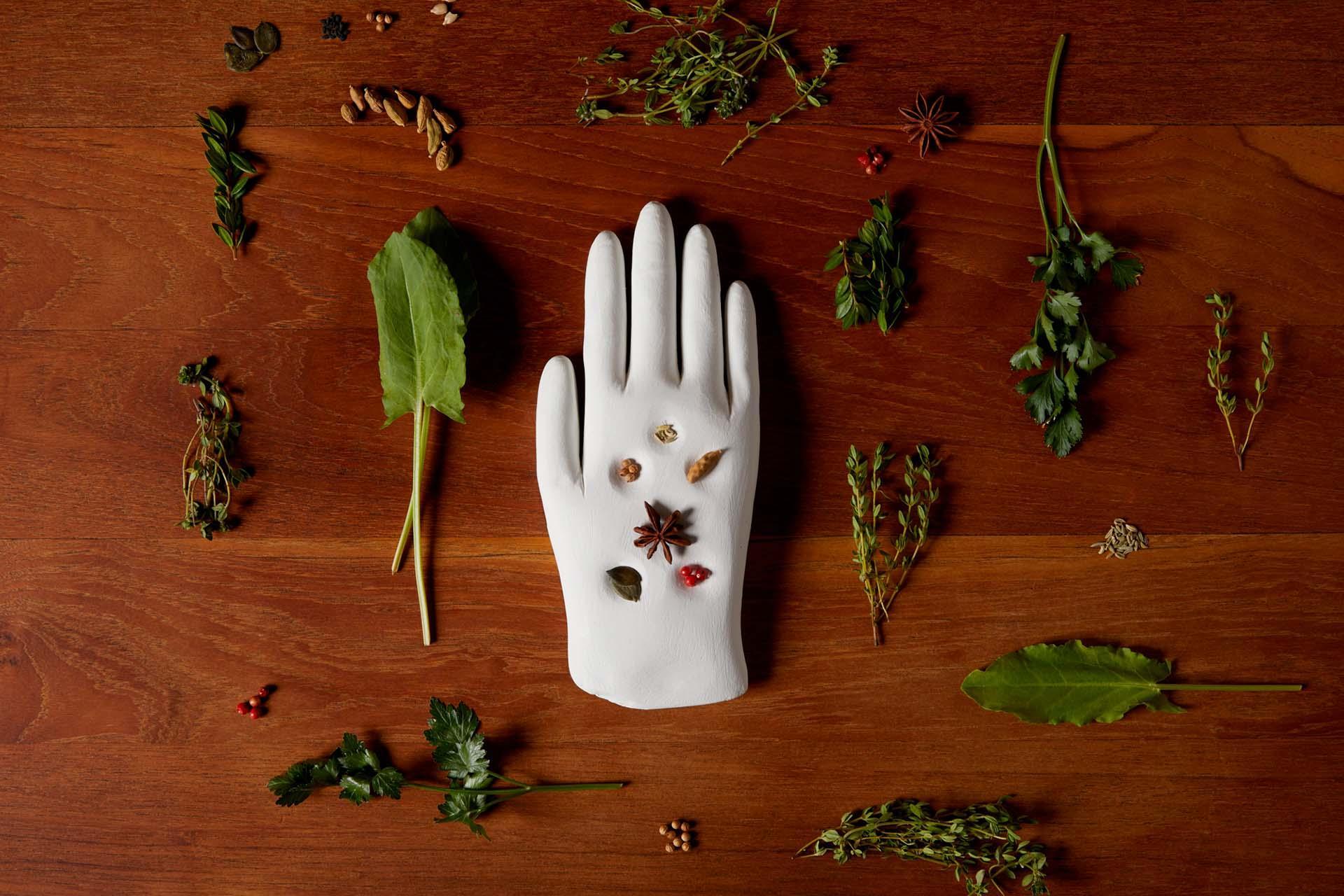 28 Posti Social Warming - Hand of Farmer