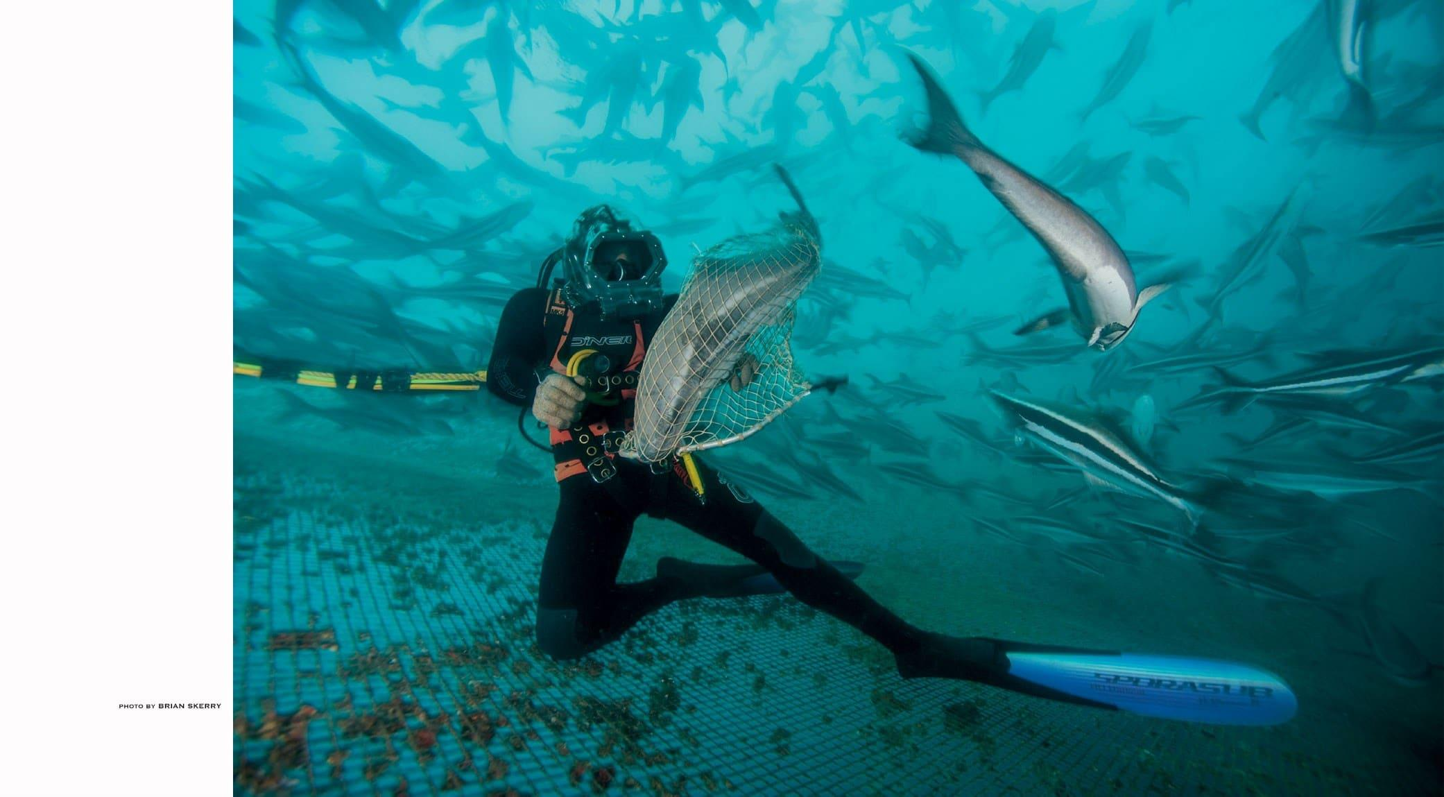 original_004-BRIAN-SKERRY-national-geographic-finedininglovers.jpg