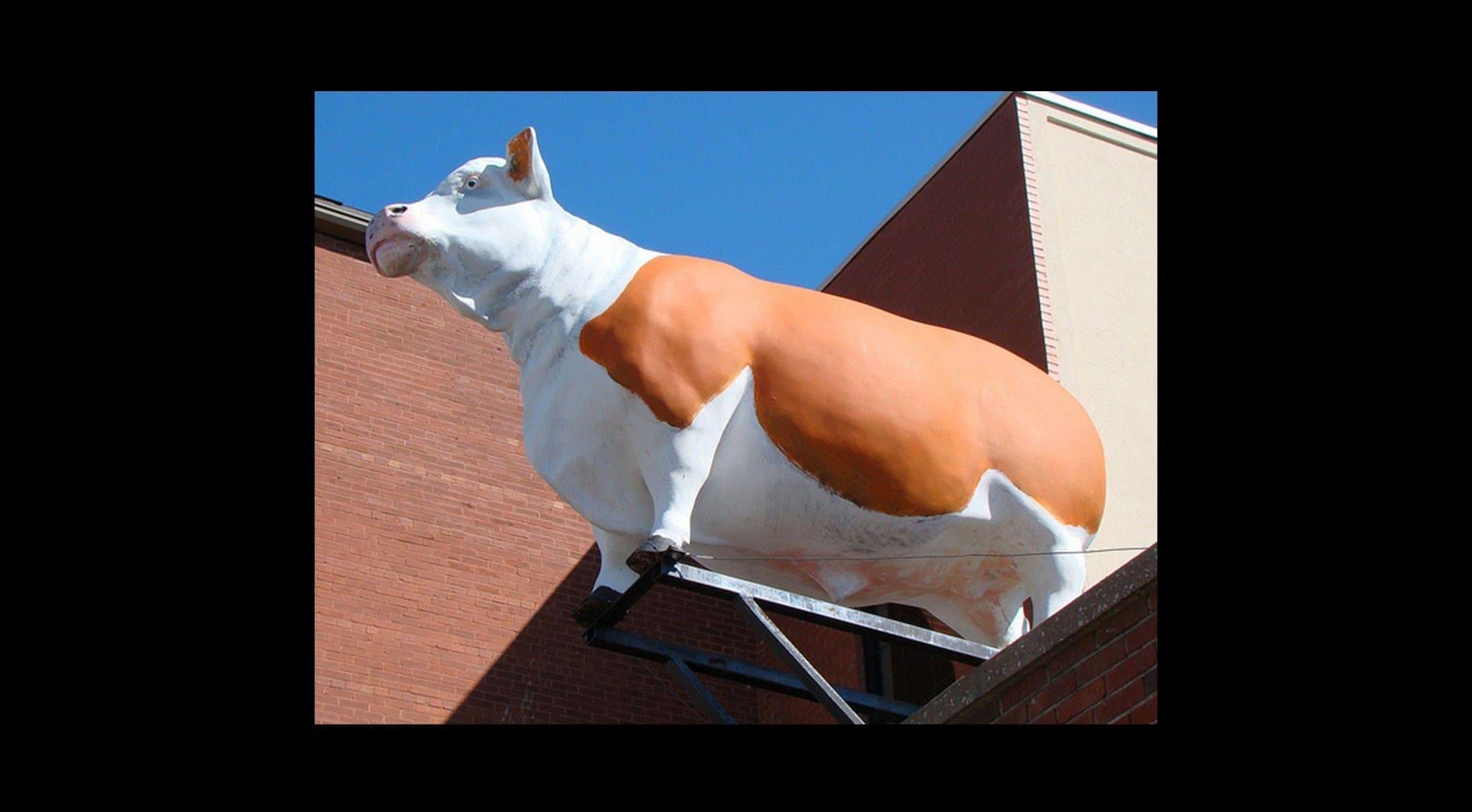 original_007-COW-finedininglovers.jpg