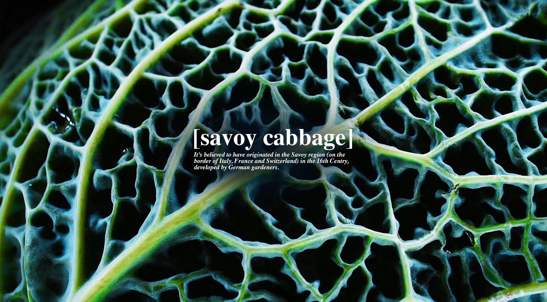 original_008-savoy-cabbage-finedininglovers.jpg