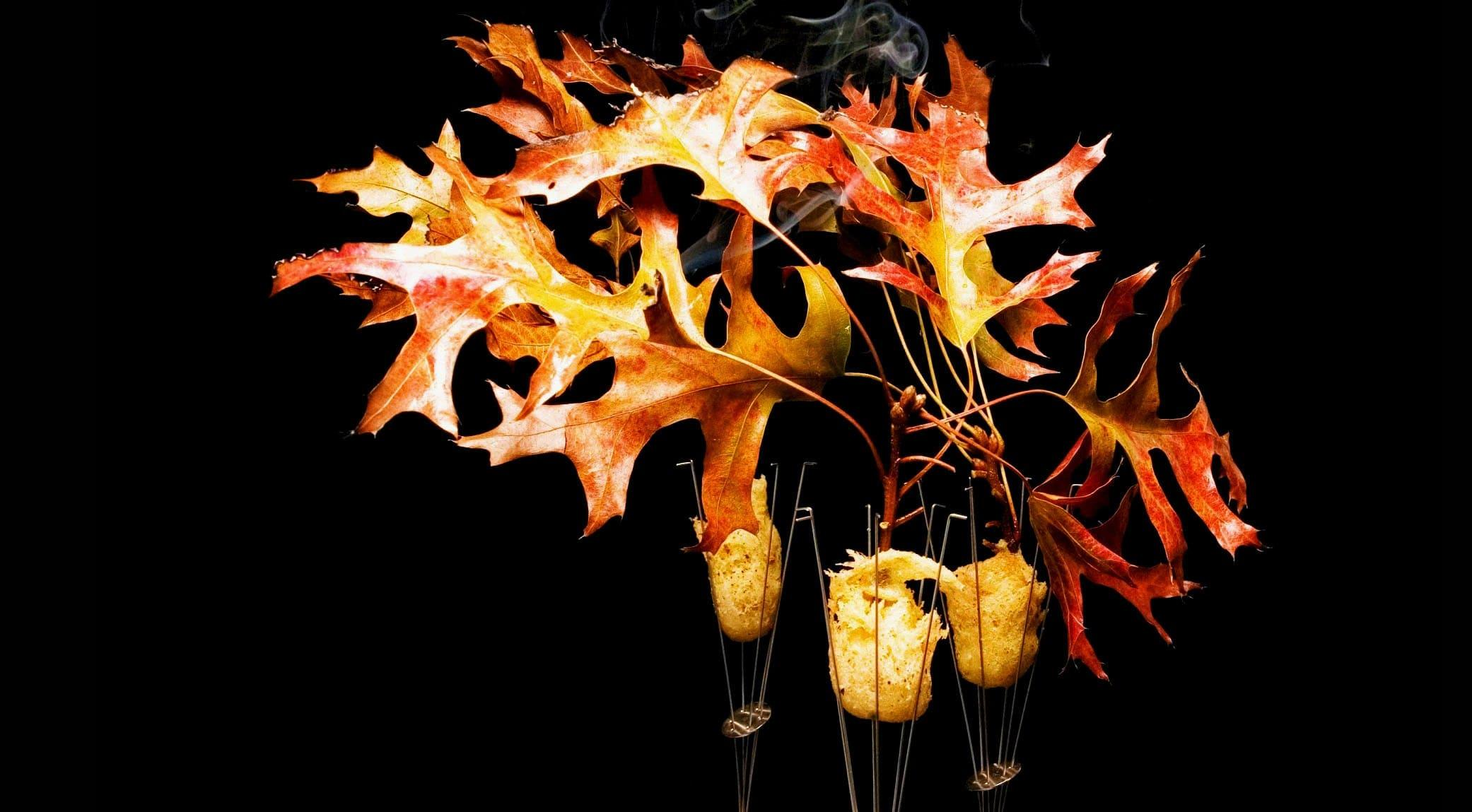 original_009-alinea-finedininglovers.jpg