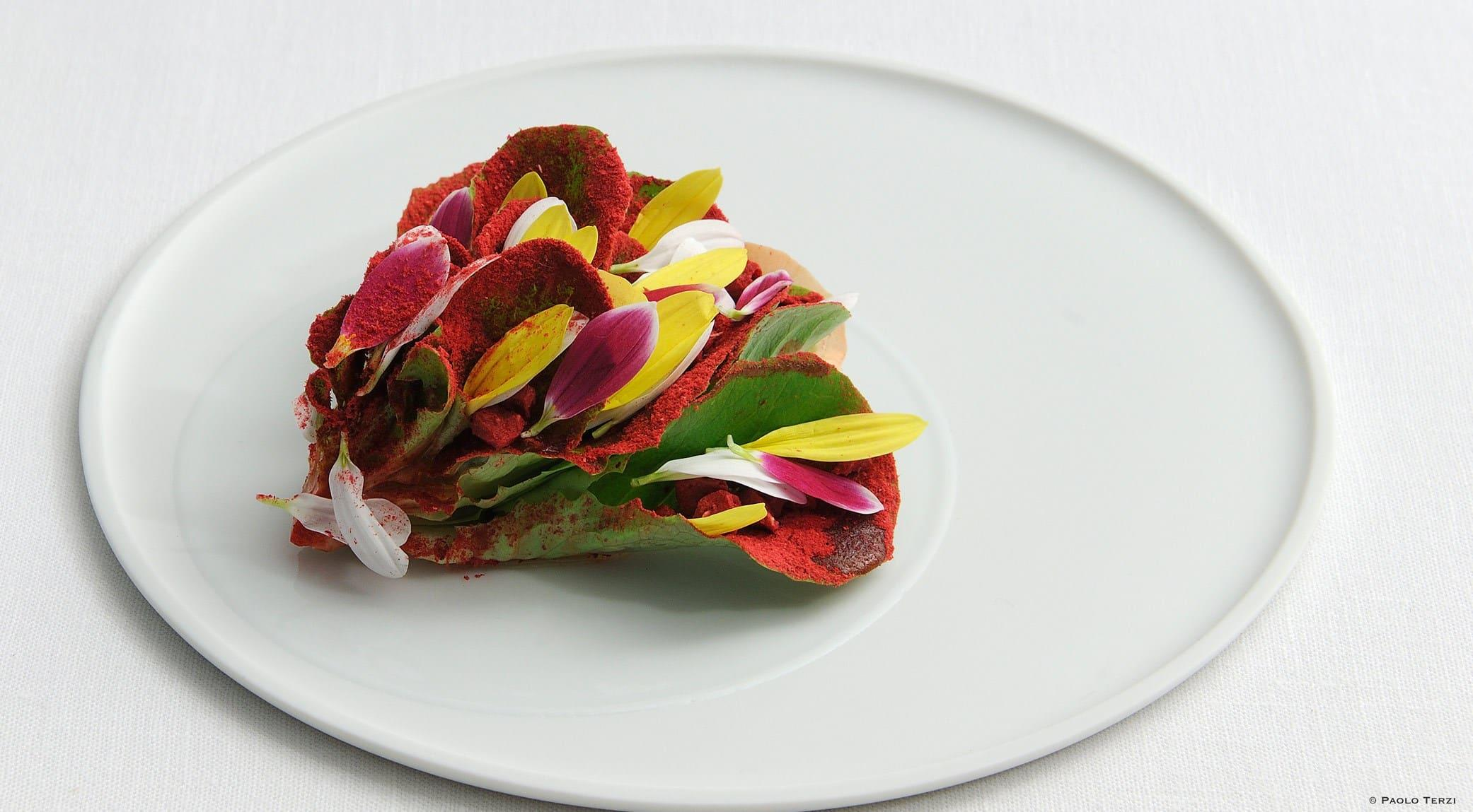 Massimo Bottura | Caesar Salad in Bloom