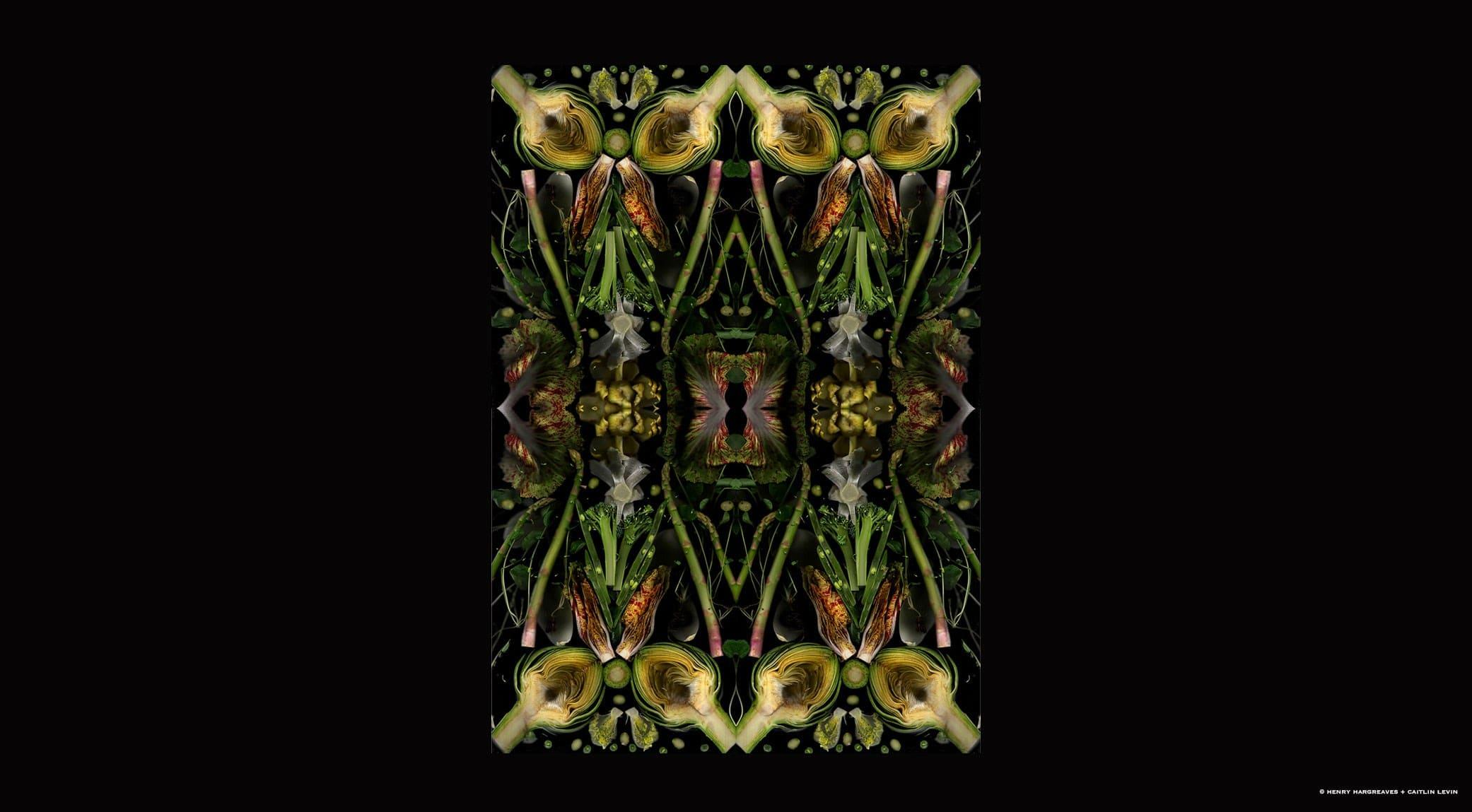 original_03-henry-hargreaves-caitlin-levin-finedininglovers.jpg