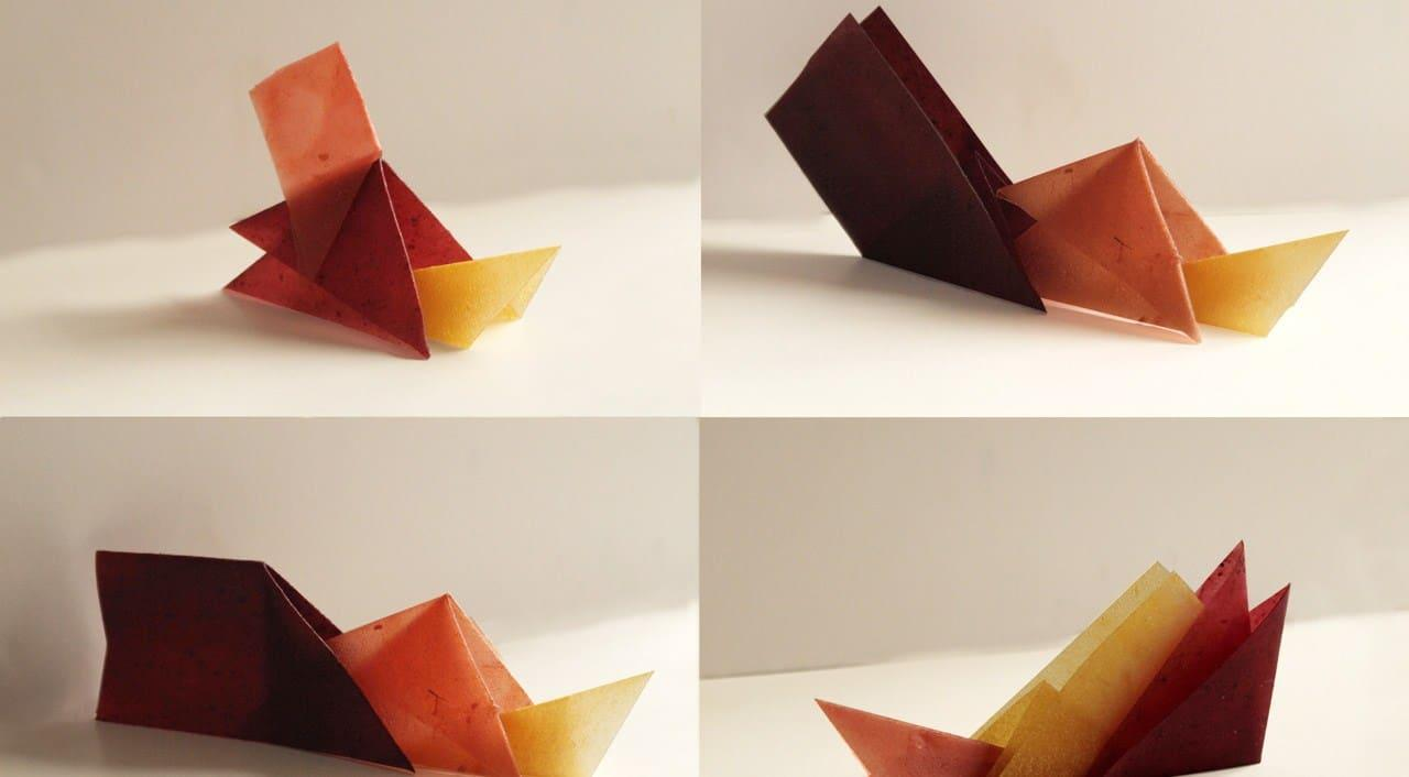 original_06-eat-it-origami-photo-delphine-huguet.jpg