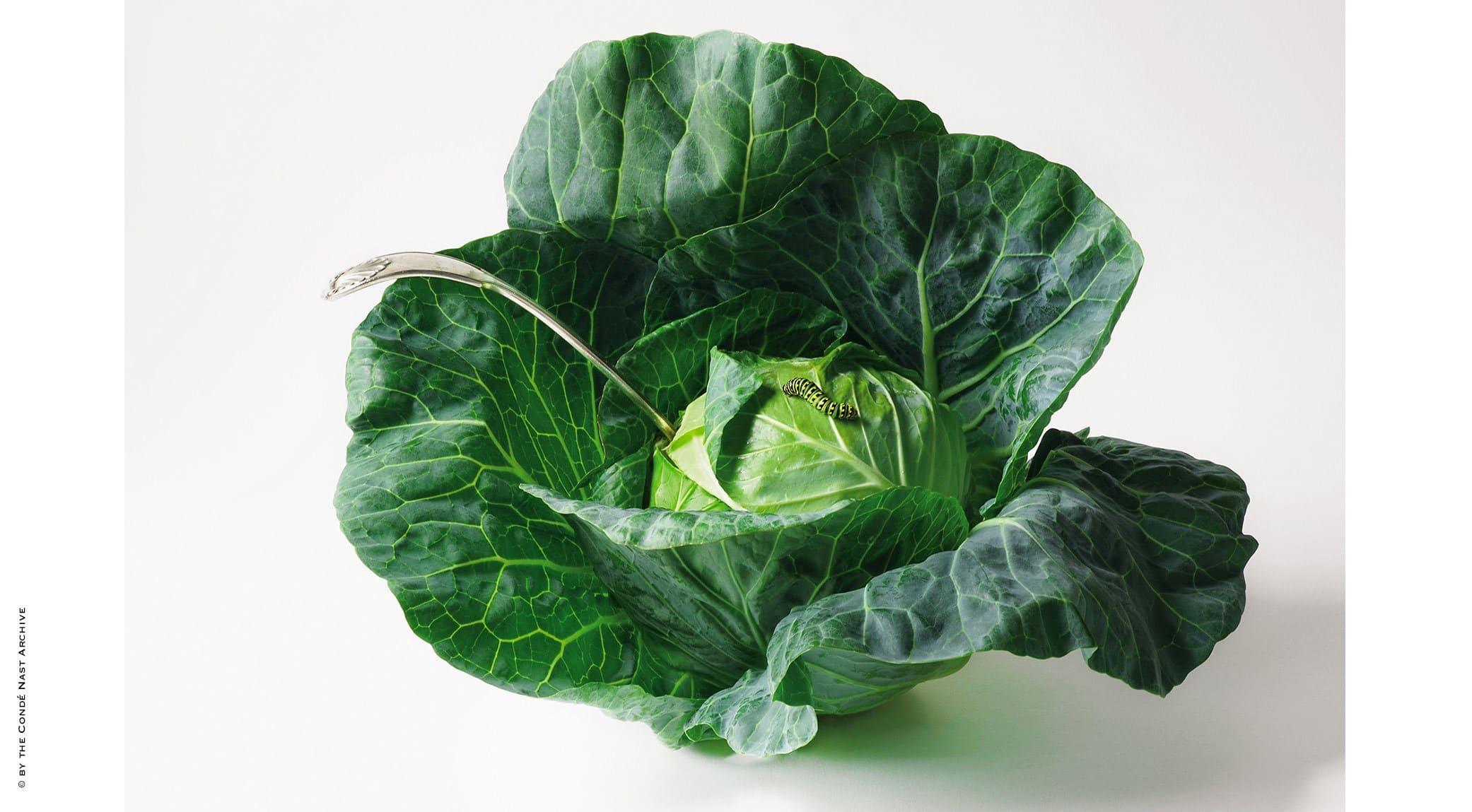 original_08-Food-in-Vogue.jpg