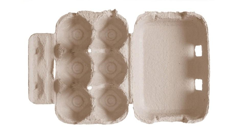original_FDL-00X-GP-egg-carton.jpg