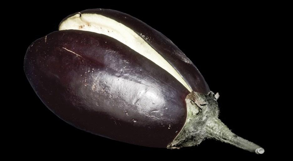 original_FDL-00X-GP07-aubergine-clap-creditAlexanderKoller.jpg