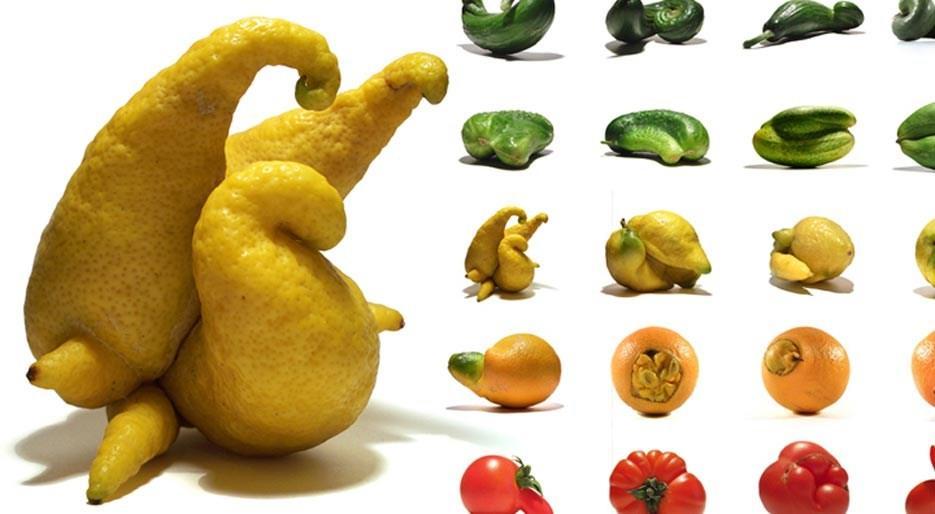 original_Foodam-Uli-Westphal-Mutatoes.jpg
