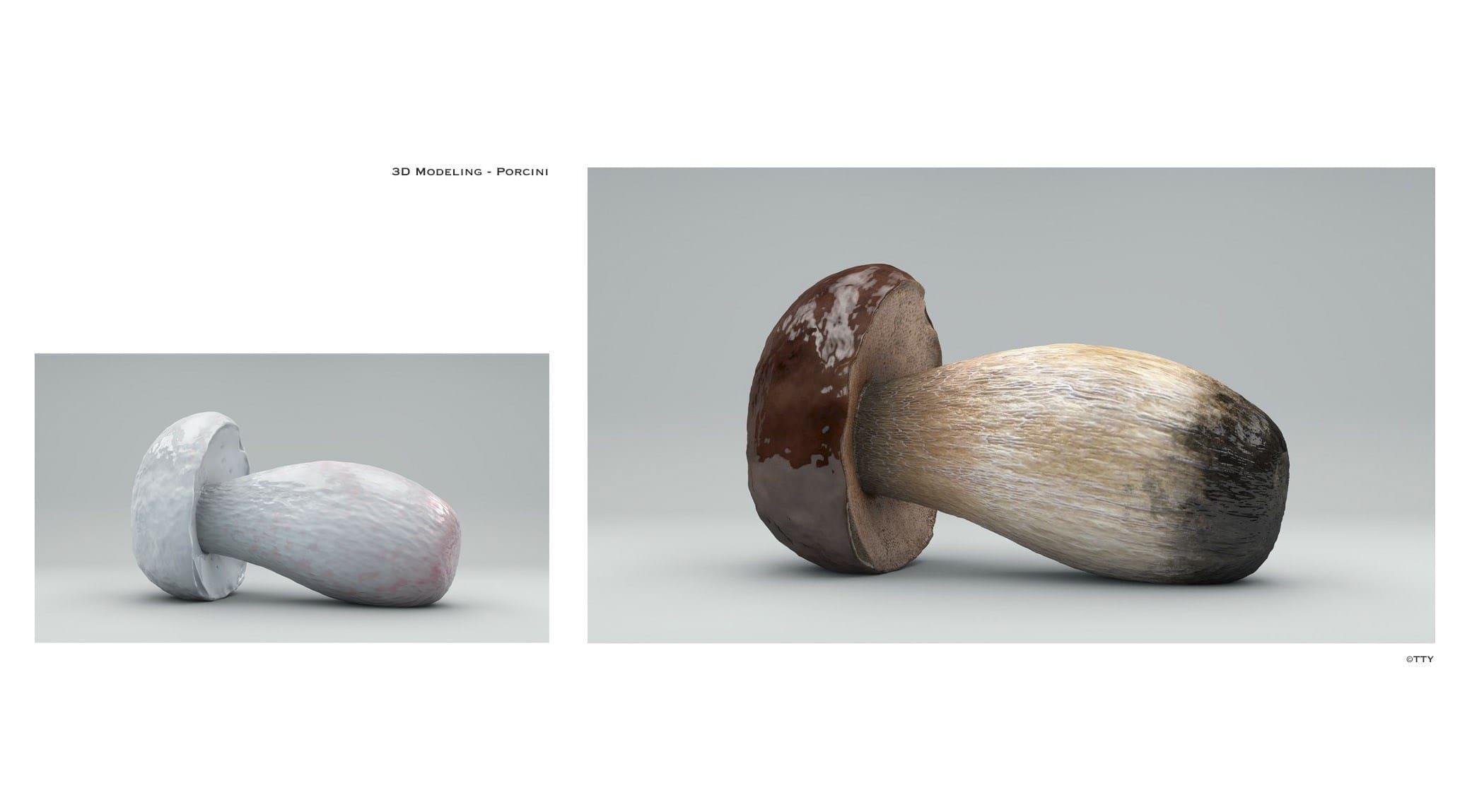 original_TTY-3D-Modeling-Porcini.jpg
