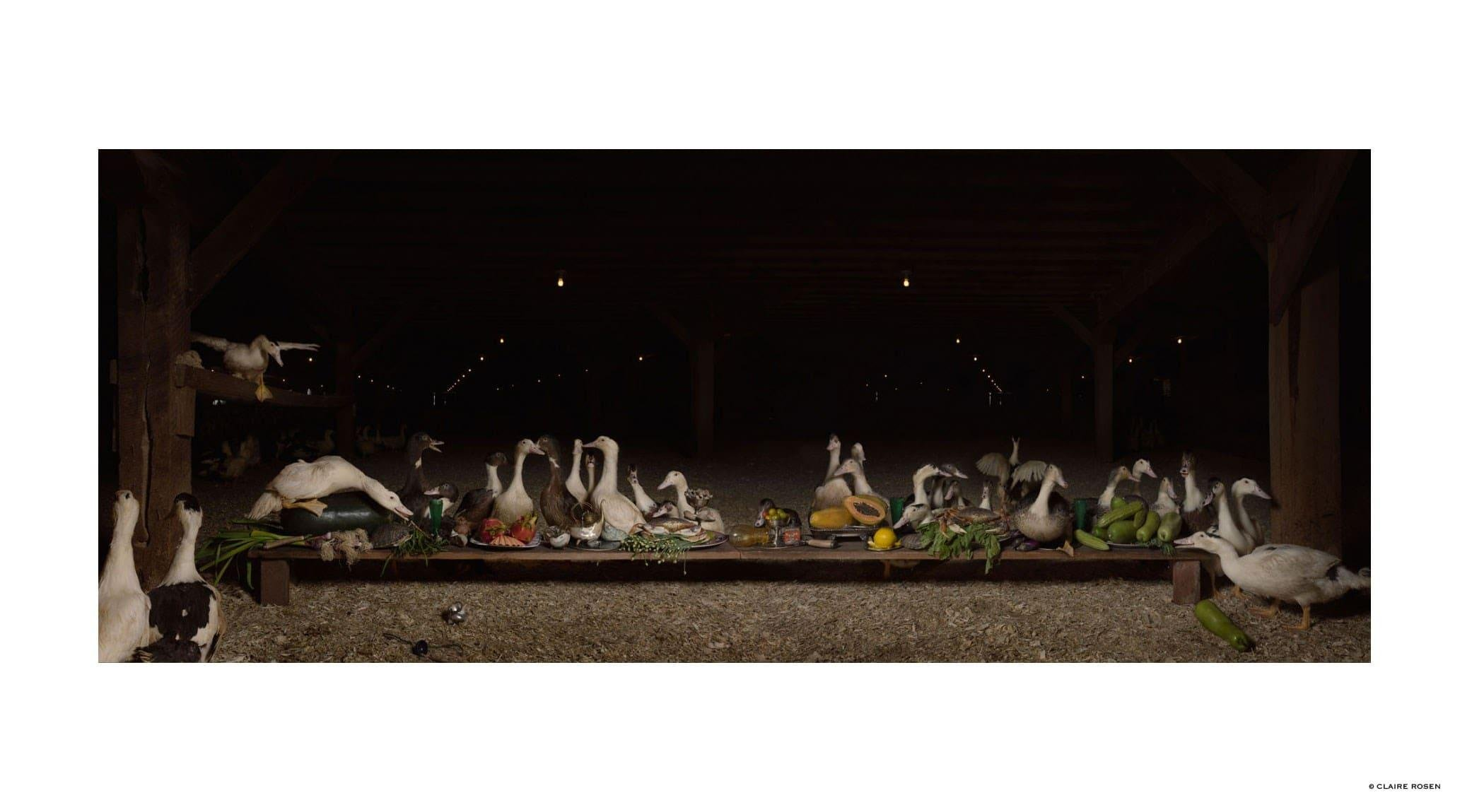 original_ducks-claire-rosen-finedininglovers.jpg
