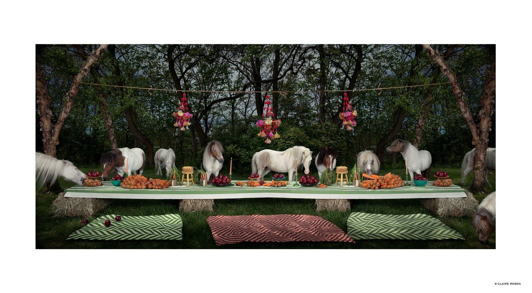 original_horses-claire-rosen-finedininglovers.jpg