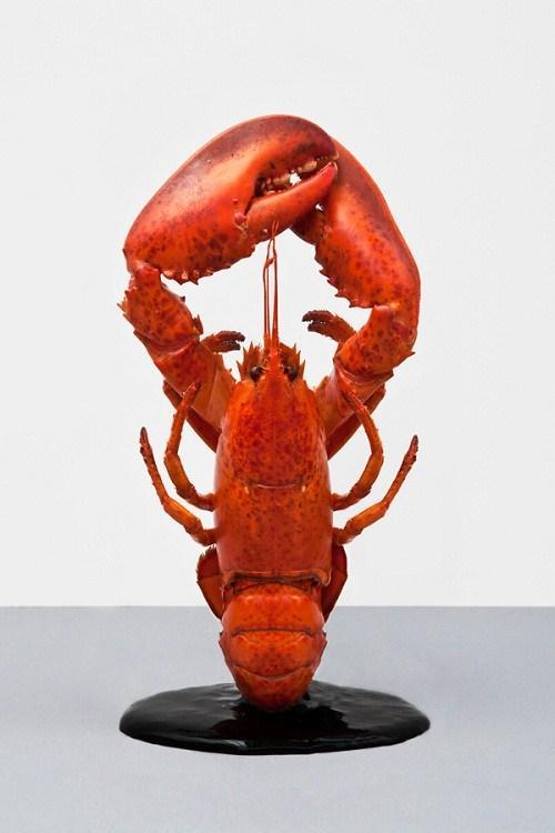 original_lobster.jpg