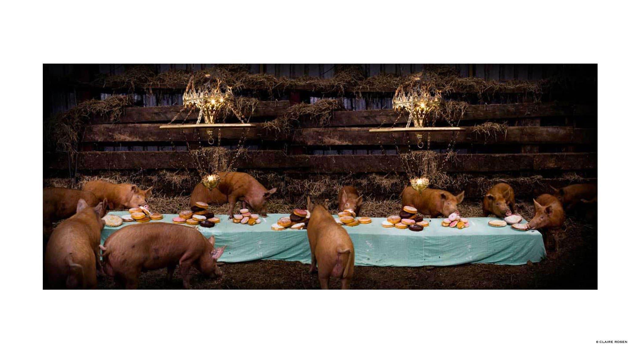original_pigs-claire-rosen-finedininglovers.jpg
