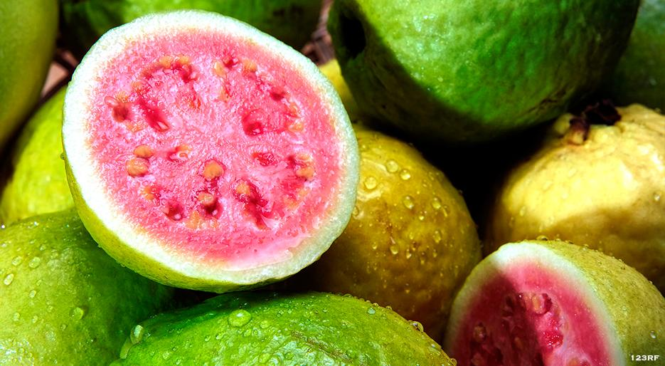 Guava From A to Z: 26 Things to Know